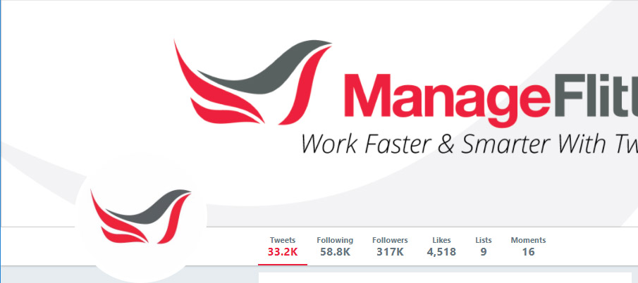 ManageFlitter has 317k followers